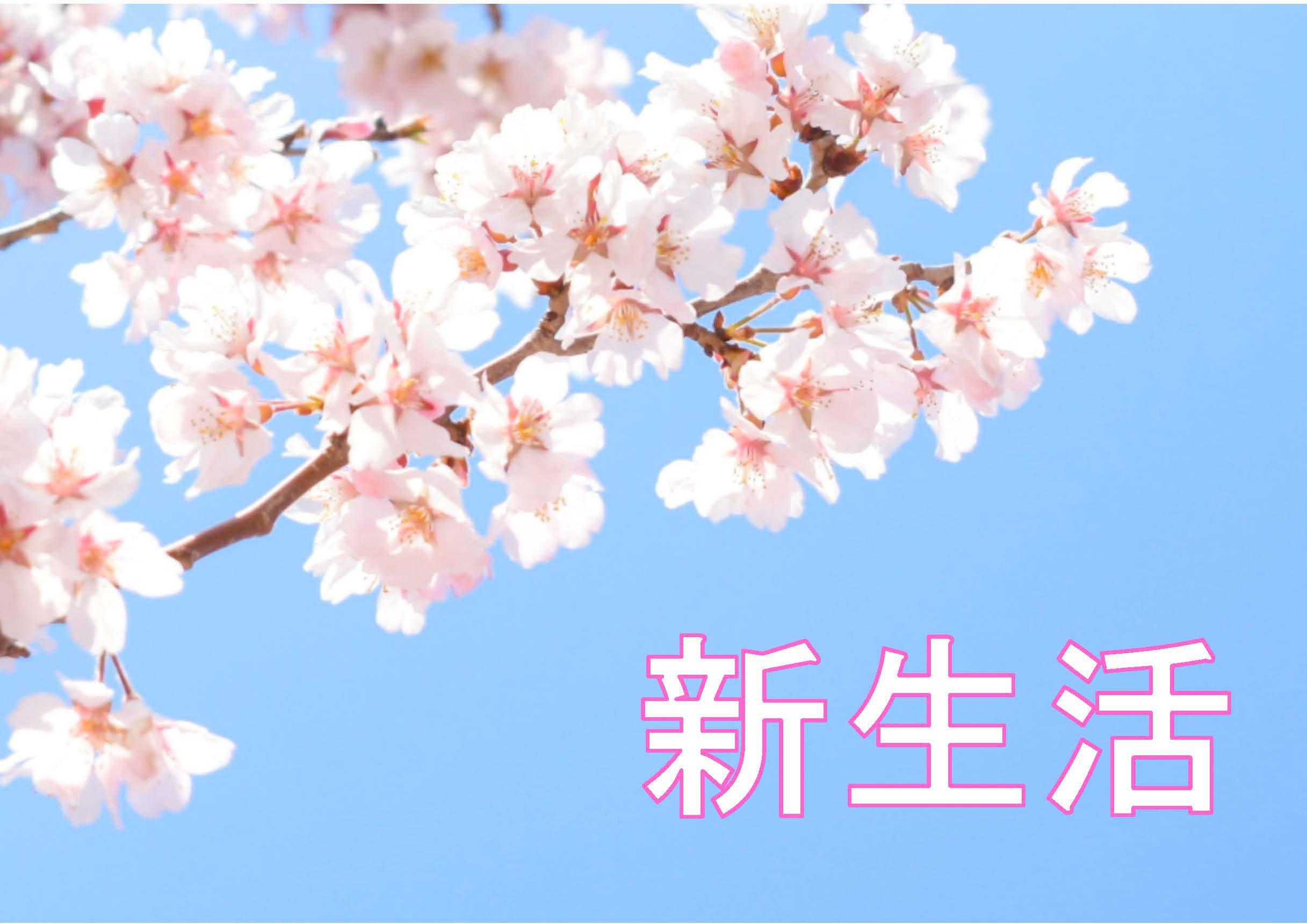 (神戸三田)4月の特集コーナー「新生活」開催中!